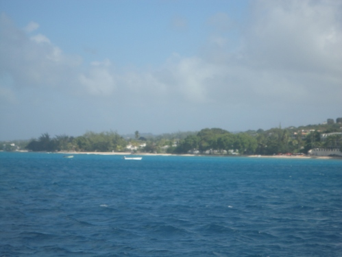 2013-01-09_Catamaran8