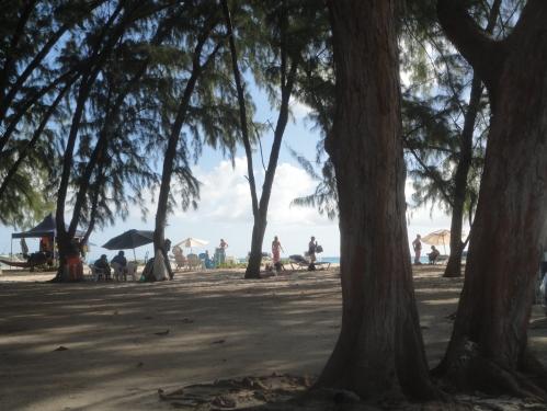 2013-01-10_MiamiBech10